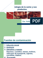 Microbiologiacarne.pptx