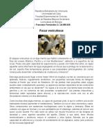 Fucus versiculosus Resumen