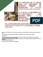 BENDICION DE ANIMALES ENERO 2016.doc