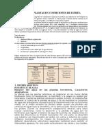 Fisiología de Plantas en Condiciones de Estrés Sarita