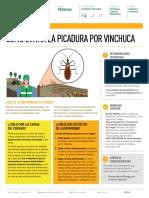 FT Vinchuca v6