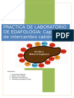 Capacidad de Intercambio Cationico Edafologia