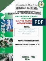 Centro Piscicola- Molinos- Pachitea