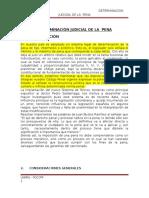 10 Determinacion Judicial de La Pena Expo
