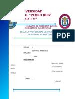 MONOGRAFIA-aguas-residualEs.docx