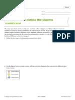 movements across the plasma membrane