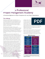Developing A Professional Project Management Academy