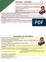 Funciones Presidente Diputación Delegables y No Delegables
