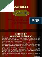 30883354 Zambeel Boutique Marketing Plan