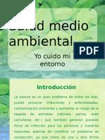 Salud Medio Ambiental