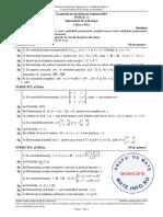 SIMULARE BACALAUREAT 2016 _XI.pdf