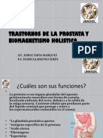 Trastornos de La Prostata y Biomagnetismo Holistico