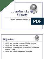 INB-480 Subsidiary Level Strategy