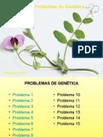 Problemas Genética