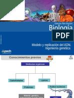 Clase 1 Modelo y Replicación Del ADN Ingeniería Genética 2015