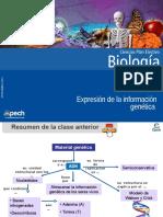 Clase 2 Expresión de La Información Genética 2015