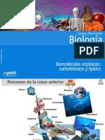 Clase 3 Biomoléculas Orgánicas Carbohidratos y Lípidos 2015