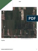Satelit Map Sawah Jln. Berdikari