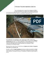 Ingeniería Civil Forense