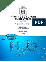 HONGOS AMBIENTALES.docx