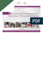 PPI_DESEMPENO DOCENTE_TECDOCENTES.pdf