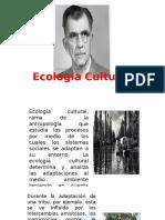Concepto de Ecologia