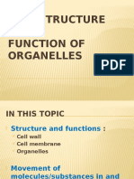 2.LECTURE 2 -CELL STRUCTURE AND FUNCTION OF ORGANELLES.pptx