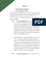 Capitulo 2 Con Indice.docx