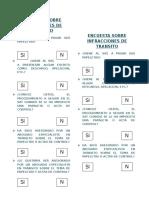 ENCUESTA 2 - PAPELETA