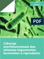 Ciências Morfofuncionais Dos Sistemas Tegumentar U1