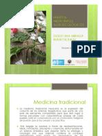 Huertos-Medicinales-Agroecologicos