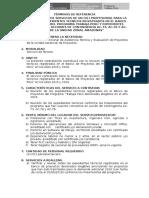01 TDR-Asistencia Técnica y Registro de Los Proyectos_AMAZONAS