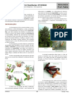 03 - Reino Metaphyta - Gimnospermas.pdf
