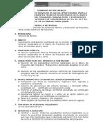 09 TDR-Asistencia Técnica y Registro de Los Proyectos_JUNIN