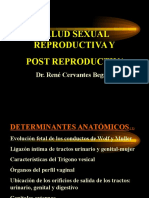 SALUD+SEXUAL+Y+REPRODUCTIVA