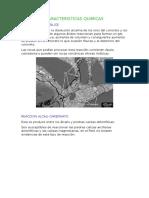 REACCION ALCALI.docx