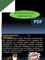 carbohidratos, lipidos y proteinas semana 3.pptx
