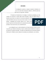 PROYECTO FINAL PRODUCTIVIDAD - MARICRUZ.doc