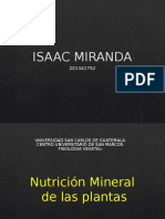 Nutricion Mineral.