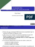 tema-5-errores-de-especificacion.pdf