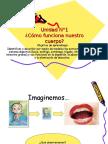 Ciencias Naturales Sistema Digestivo, 5to