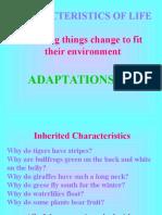 adaptations 2012 1