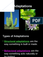ppt5-5 10-a-plant-adaptations-22wc79k