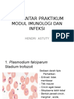 Rev. Pengantar Praktikummodul Imunologi & Infeksi.ppt1