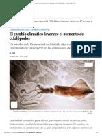 El cambio climático favorece el aumento de cefalópodos _ Ciencia _ EL PAÍS.pdf