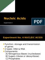 Nucleic Acids-rev.pptx