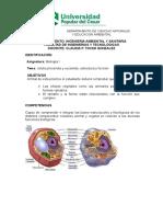Guia 2. Celula Procariota y Eucariota