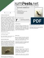 Silverfish.pdf