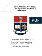 CICLOS BIOGEOQUÍMICOS.docx