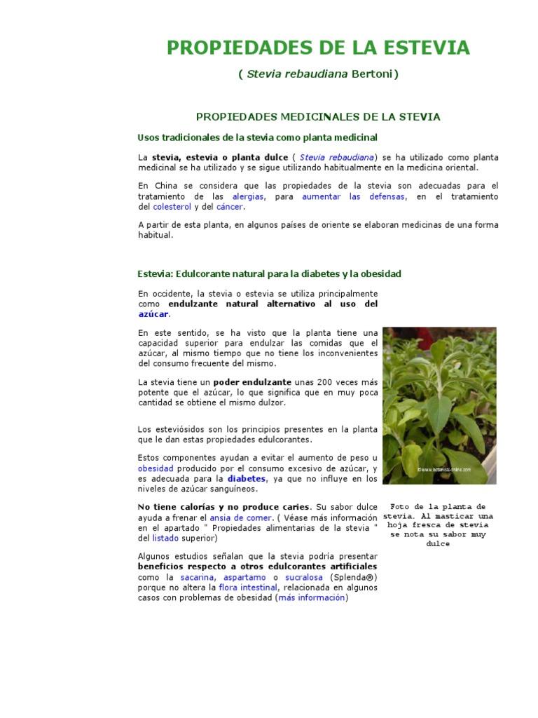 obtencion de azucar de stevia y diabetes